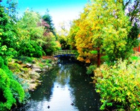 Bridge in Regent's Park
